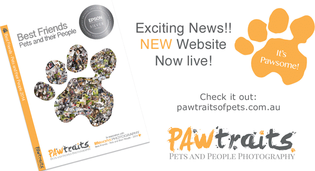 PAWtraits website