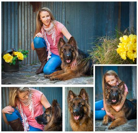 German Shepherd _ PAWtraits Pet photography, Melbourne