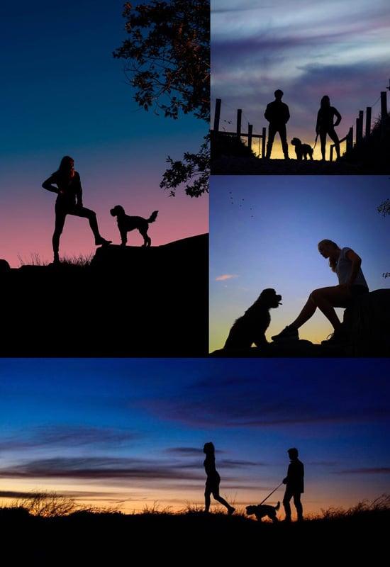 Sunset Session PAWtraits