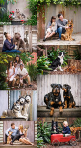 Outdoor studio PAWtraits - Melbourne