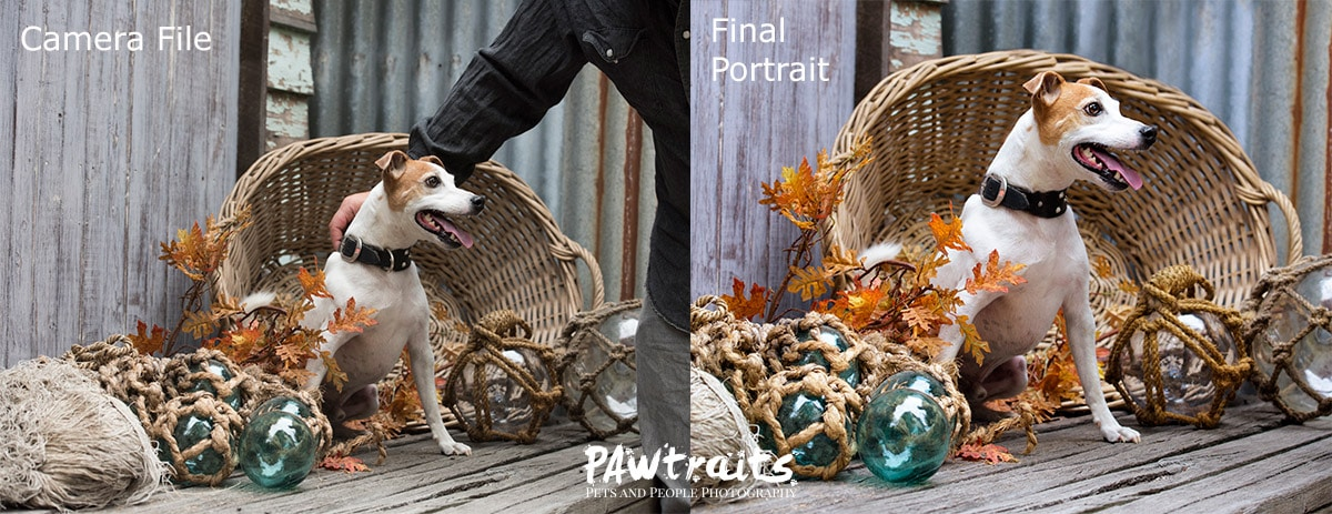 Digital file vs Final Portrait